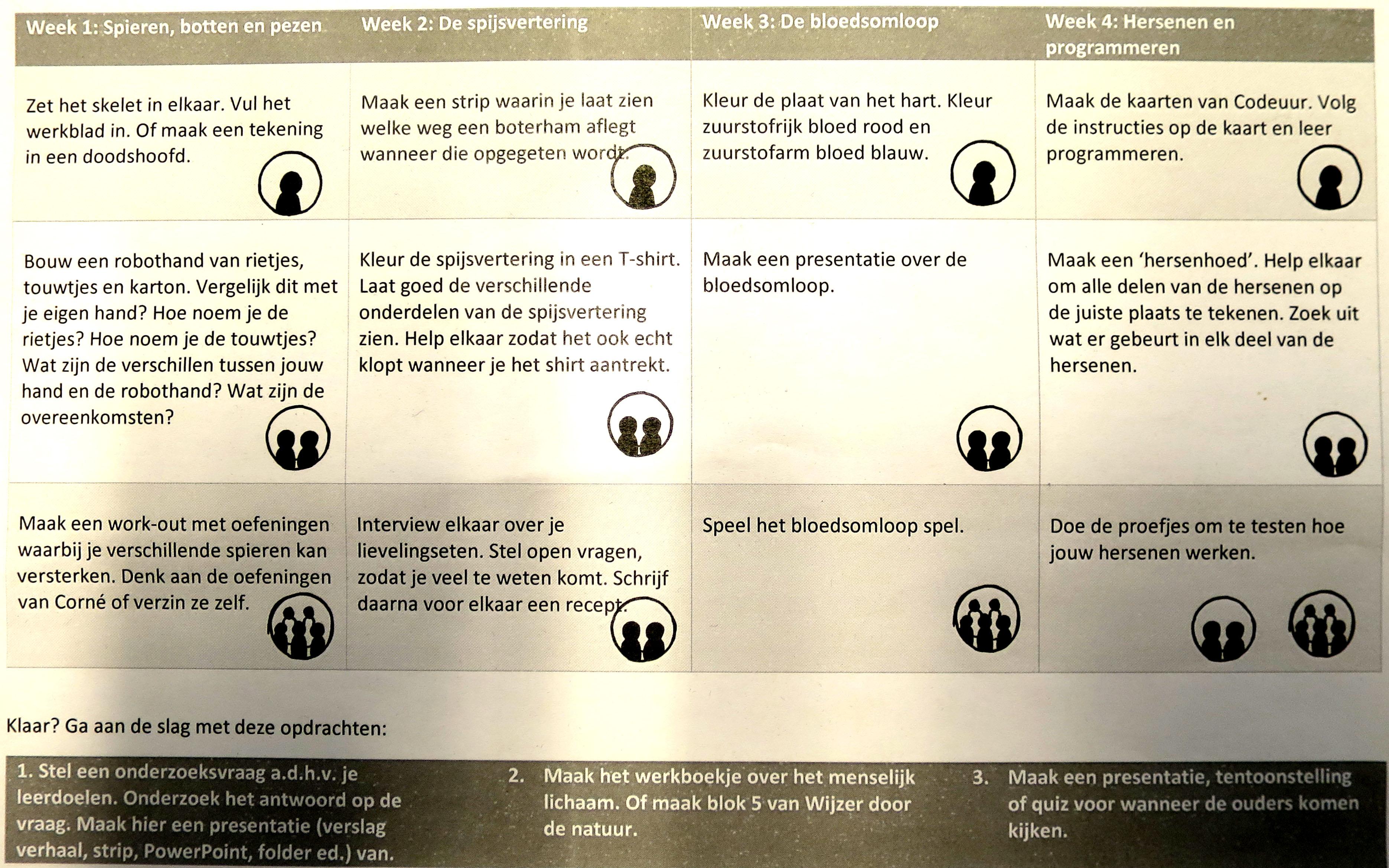 Project Groep 8 Menselijk Lichaam Woord Amp Beeldclub
